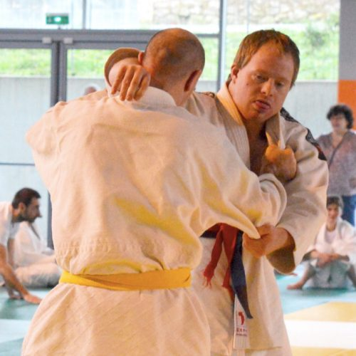 Section judo adapté
